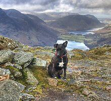 Tarn On Fleetwith Pike by Jamie  Green