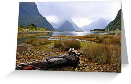Milford Sound. South Island, New Zealand. by Ralph de Zilva