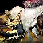 Cool Cowboy by grannyshot