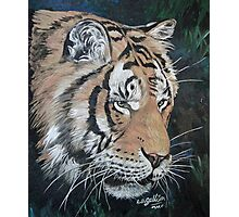 Finished Tiger Photographic Print