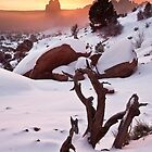 Snow, Fog, and Arches by Wayson Wight