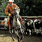 The roundup rider by Alan Mattison