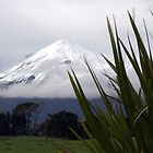 Mount Taranaki by wanderingtrucki