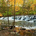 Corbetts Glen, Postcard Falls by Lisa Cook