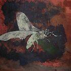 Arizona Moth by MichaelMcCallum