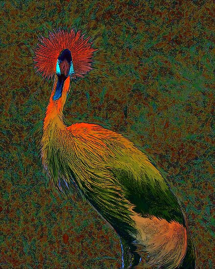 crowned crane by jashumbert