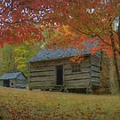 An Autumn Morning in Appalachia by James Hoffman
