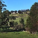 Kinglake - Melbourne by Joy Watson