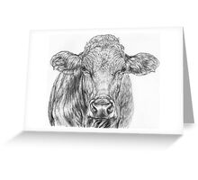 Cow Sketch Greeting Card