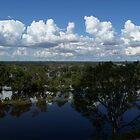 River Murray In Flood by Dwayne Madden