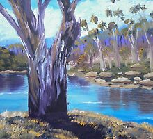 Gums Trees of the Snowy River by PamelaMeredith