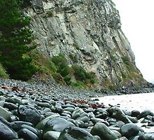Phonolite headland, Purakanui by orkology