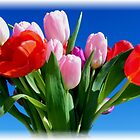 Get Well Tulips by Loree McComb