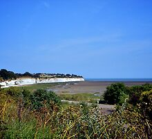 Low Tide, Pegwell Bay by Lisa Hafey