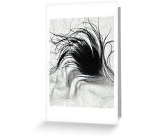 Ruffled Feather Greeting Card