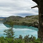 Torres del Paine - Chile(2) by fraukevelghe