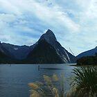 Mitre Peak, Milford Sound, New Zealand by orkology