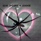 GIVE  SPIDERS  A  CHANCE by Heidi Mooney-Hill