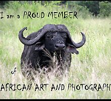 African Art & Photography banner by Elizabeth Kendall