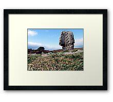 Cork Stone Framed Print