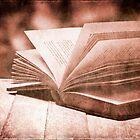 Open book by friendlydragon