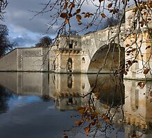 Blenheim Palace bridge by Nic Sipson