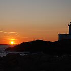 Eastern Point Sunset - Gloucester, Massachusetts by Steve Borichevsky