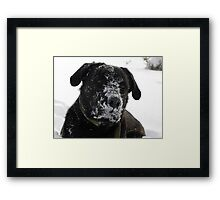 Nothing Like A Big Ol' Frosty Mug!!!!!!!! Framed Print