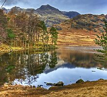 The February Tarn.. by VoluntaryRanger