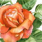 Orange Rose, Kissed by Dewdrops by Anne Sainz