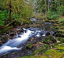 Beaver Creek by martingilchrist