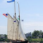 Schooner Virginia in Inner Gloucester Harbor by Steve Borichevsky