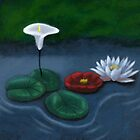 Water Lilies by t0mt0m