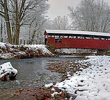 Snowy Muncy Creek Crossing by Gene Walls