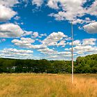 Birch Flagpole by Joe Jennelle