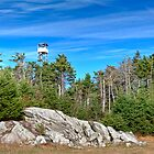 Fire Tower by Joe Jennelle