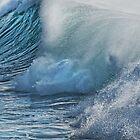 Big Surf by Dianne English