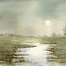 marsh cottages by Neil Jones