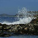 Pacific Rim, Tofino, BC, Canada by AnnDixon