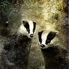 A Badgers Lot by Angela  Burman