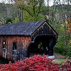 Baltimore Covered Bridge by djphoto
