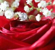 Romance by Lynn  Gibbons