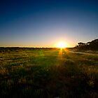 Jack's Walk Sunset by Matt Haysom