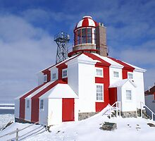Cape Bonavista Lighthouse by Annlynn Ward