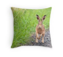 Brown Hare, Lancashire Mosses Throw Pillow