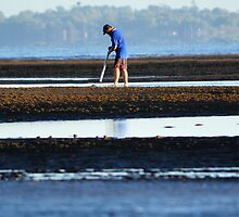 Pipi Pumping on Nudgee Beach by David Mellor