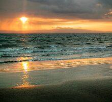 Zancudo Sunset by Cheryl  Lunde