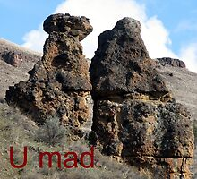 Mad at me? by Dave Sandersfeld