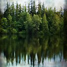 Reflections Of Nature by Terrie Taylor