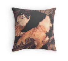 Kitty Cat Cuddle Throw Pillow